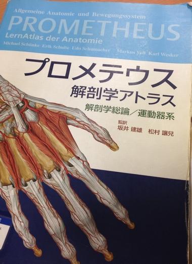 001136 - 【百本コラム】七本目:『足部の運動連鎖トリガー応用編』