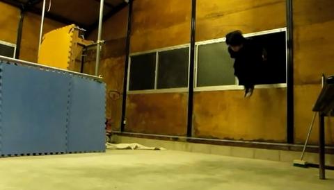 00197 - 【第2回 エクストリームスポーツ情報】土下座版セクシーコマンドー!?焼き土下座を超えたエクストリーム土下座