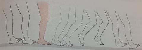 00420 - 【百本コラム】七本目:『足部の運動連鎖トリガー応用編』