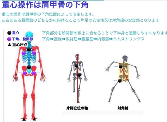 002 101 - 【上半身の重心位置を考える筋トレ】ベンチプレスは3パターン!パワー強化だけが絶対正義ではない!日本一のソフトバンクのように筋トレし筋肉を付けていく際に気を付けるべき視点