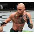 160 89 120x120 - 【総合格闘技】UFC257、コナーマクレガーが「カーフキック」で敗れる