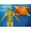 160106 100x100 - 疲労物質と考えられていた乳酸は、むしろエネルギーを補う物質である