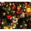 160158 100x100 - 【イベント情報】レア肉料理好き必見!12月21日(日)高タンパクでヘルシーなクリスマスパーティー!