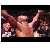 160168 - UFC(アルティメット・ファイティング・チャンピオンシップ)とは