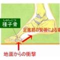160205 120x120 - 【特別コラム・舟橋 立二さん】3つの筋肉がカギとなる。『親指の付け根』種子骨は正しい位置にありますか?