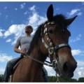 160318 120x120 - 松本人志「暑中お見舞い申し上げます」馬に乗った写真を公開しラオウ化へ