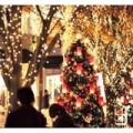 160415 120x120 - 「メリー筋肉増す!」クリスマスは筋トレで差をつける最良の日である